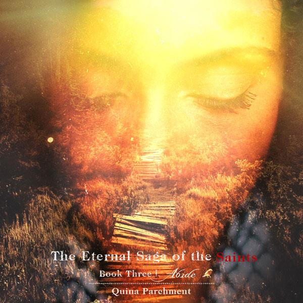 Abide   Book Three Cover Release